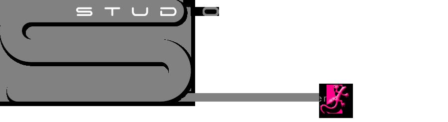 STUDIO S architekt martin steinthaler